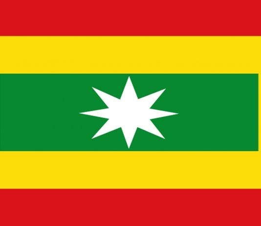 Bandera-cuadrilonga-de-cartagena