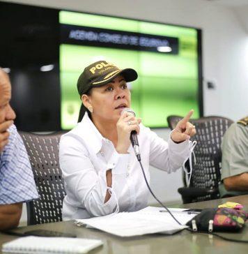 Yolanda-wong-consejo-de-seguridad